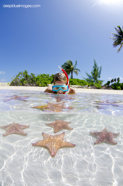 Starfish Point Cayman Photography